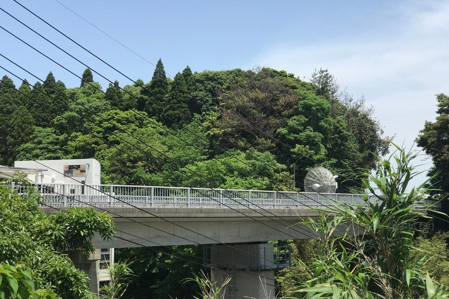 日本一周-30日目